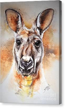 Kangaroo Big Red Canvas Print by Sandra Phryce-Jones