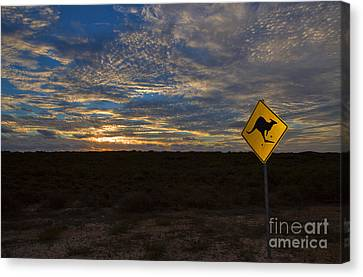 Kangaroo Crossing Sign At Sunset Canvas Print by Louise Heusinkveld