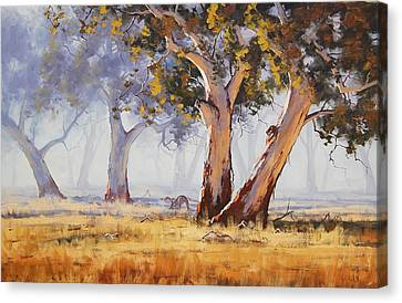 Eucalyptus Canvas Print - Kangaroo Grazing by Graham Gercken