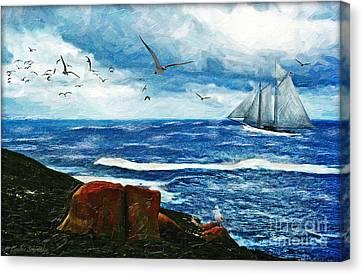 Kangaroo Island Canvas Print by Lianne Schneider