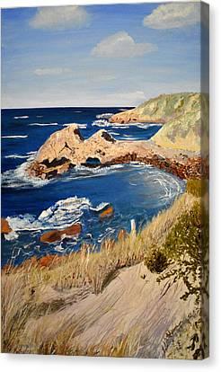 Kangaroo Island Lookout Canvas Print by Zilpa Van der Gragt