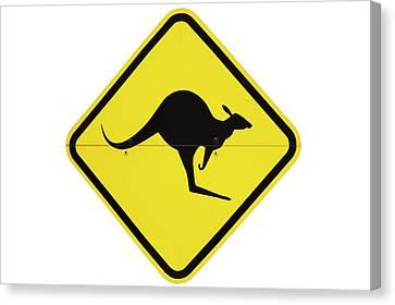 Kangaroo Warning Sign, Australia Canvas Print by David Wall