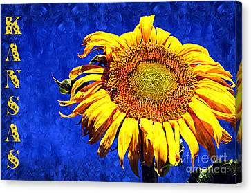 Kansas Canvas Print by Andee Design