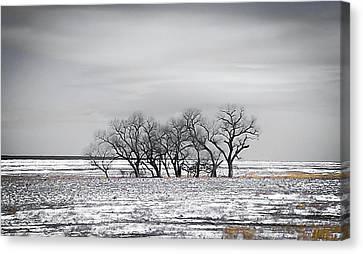 Kansas Snow Canvas Print