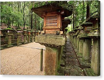 Kasuga Taisha Shrine In Nara, Japan Canvas Print by Paul Dymond