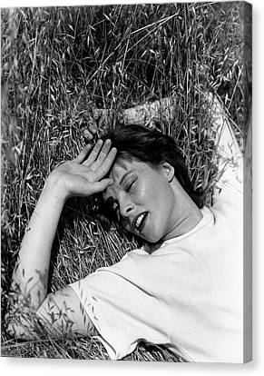 Katharine Hepburn Lying Down In The Grass Canvas Print by George Hoyningen-Huene