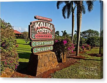 Kauai Coffee Canvas Print by Scott Pellegrin