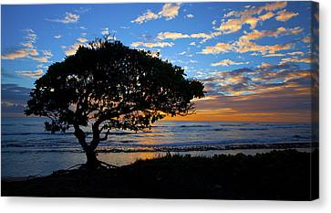 Kauai Sunrise Canvas Print