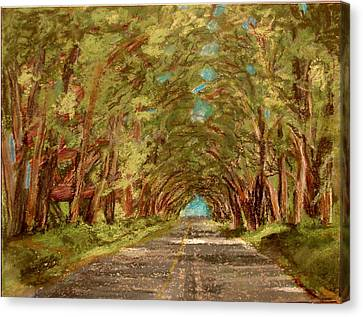 Kauiai Tunnel Of Trees Canvas Print by Joseph Hawkins