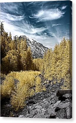 Kautz Creek Canvas Print