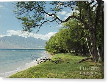 Kawililipoa Beach Kihei Maui Hawaii Canvas Print