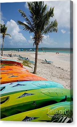 Kayaks On The Beach Canvas Print by Amy Cicconi