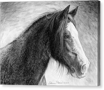 Draft Horse Canvas Print - Kaylee by Katherine Plumer