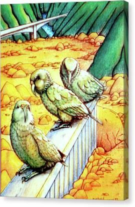 Kea Canvas Print by Barbara Stirrup