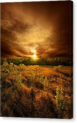 Keep Me In Your Heart Canvas Print by Phil Koch