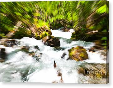 Keep Your Focus Canvas Print by Chris Heitstuman