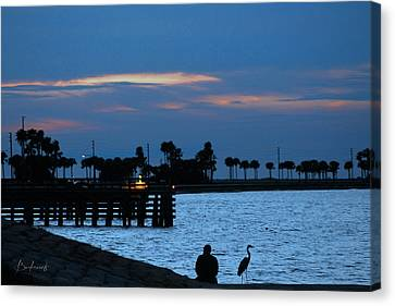 Keeping Watch Canvas Print by Robin Lewis