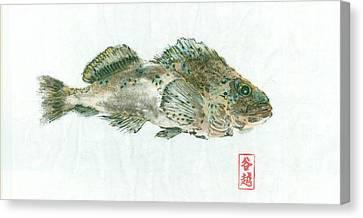 Kelp Greenling Gyotaku Canvas Print by Julia Tinker
