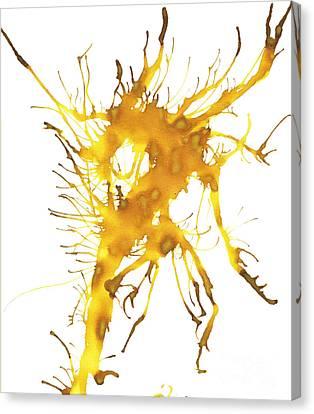 Kelpie 3 Canvas Print