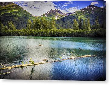 Kenai Alaska Lake Canvas Print