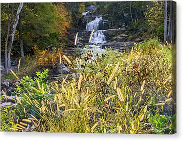 Kent Falls Canvas Print by Bill Wakeley