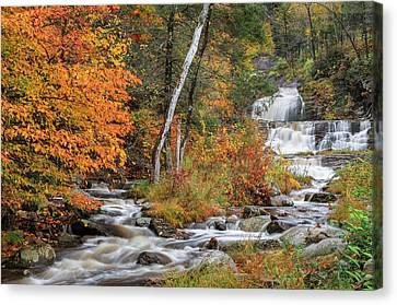 Kent Falls State Park Canvas Print by Bill Wakeley