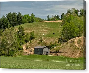 Kentucky Barn Quilt - Americana Star 2 Canvas Print by Mary Carol Story