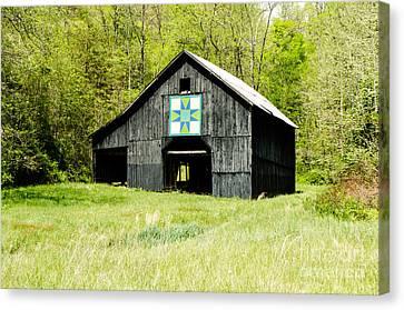 Kentucky Barn Quilt - Darting Minnows Canvas Print by Mary Carol Story