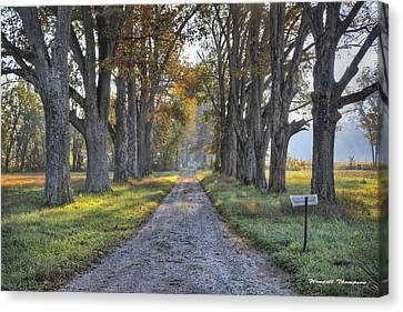 Kentucky Country Lane Canvas Print