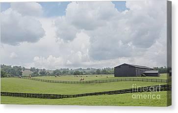 Kentucky Farm Canvas Print by Kay Pickens