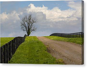 Kentucky Horse Farm Road Canvas Print