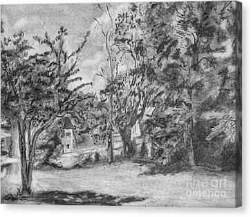 Kentucky Trees Canvas Print