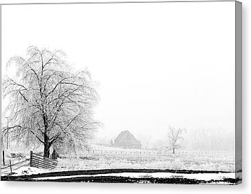 Kentucky Winter  Canvas Print