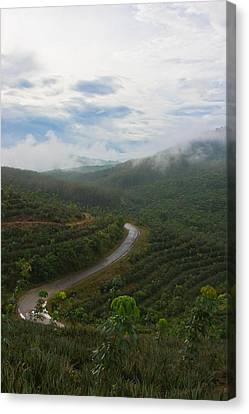 Canvas Print featuring the photograph Kerala Tea Plantation by Sonny Marcyan