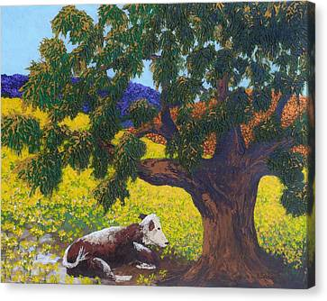 Canvas Print featuring the painting Kern County Cow by Katherine Young-Beck