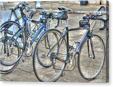 Kestrel And Specialized--ironman Rides Canvas Print by David Bearden