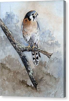 Canvas Print featuring the painting Kestrel Perch by Mary McCullah