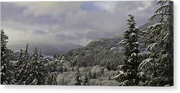 Canvas Print featuring the pyrography Ketchikan Alaska After A Small Snow. by Timothy Latta