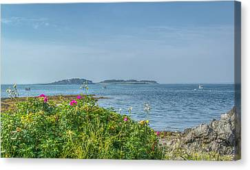 Canvas Print featuring the photograph Kettle Cove by Jane Luxton