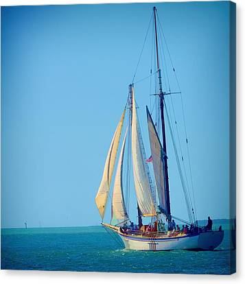 Canvas Print featuring the photograph Key West Sailing by Pamela Blizzard