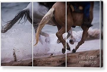 Kicking Up The Sand Canvas Print by Mary Lou Chmura