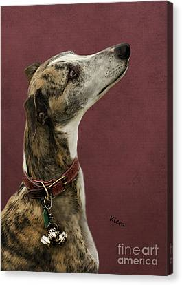Kiera Canvas Print by Linsey Williams