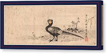Kiji, Pheasant. Print Shows A Pheasant Facing Left Canvas Print by Japanese School