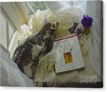 Canvas Print featuring the photograph Kiki Kinky by Delona Seserman