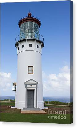 Kilauea Lighthouse Canvas Print by Suzanne Luft