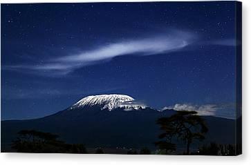 Kilimanjaro In Moonlight Canvas Print by Babak Tafreshi