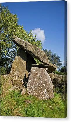 Kilmogue Megalithic Tomb, Harristown Canvas Print by Panoramic Images