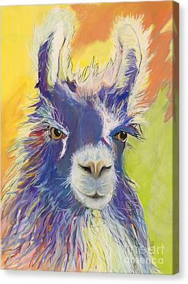 Llama Canvas Print - King Charles by Pat Saunders-White