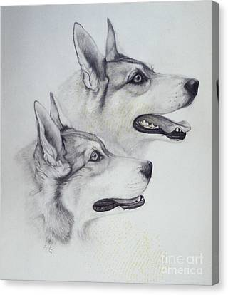 Huskies Canvas Print - King Dogs by Joey Nash