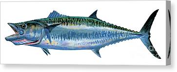 King Mackerel Canvas Print by Carey Chen